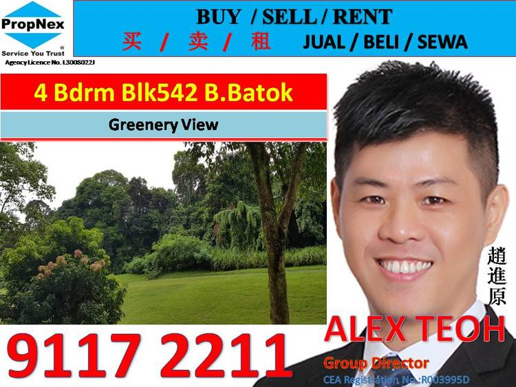 542 Bukit Batok Street 52