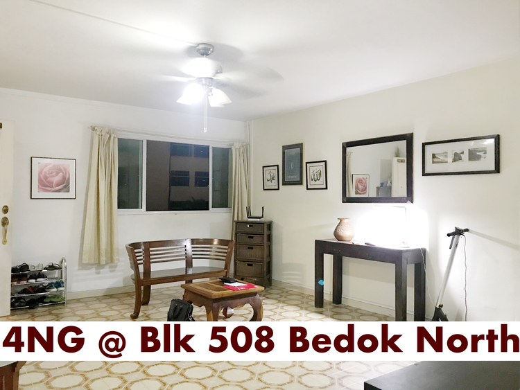 Bedok North Avenue 3 photo thumbnail