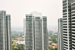 D'Leedon photo thumbnail #12