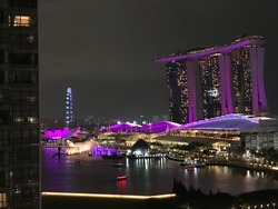 Marina Bay Suites (D1), Condominium #205795801