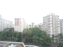 Telok Blangah Heights photo thumbnail #9