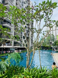 Blossom Residences photo thumbnail #7