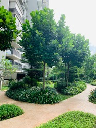 Blossom Residences photo thumbnail #9