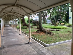 Spottiswoode Park photo thumbnail #8