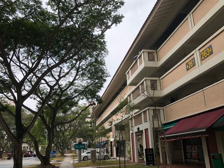 261 Serangoon Central Drive