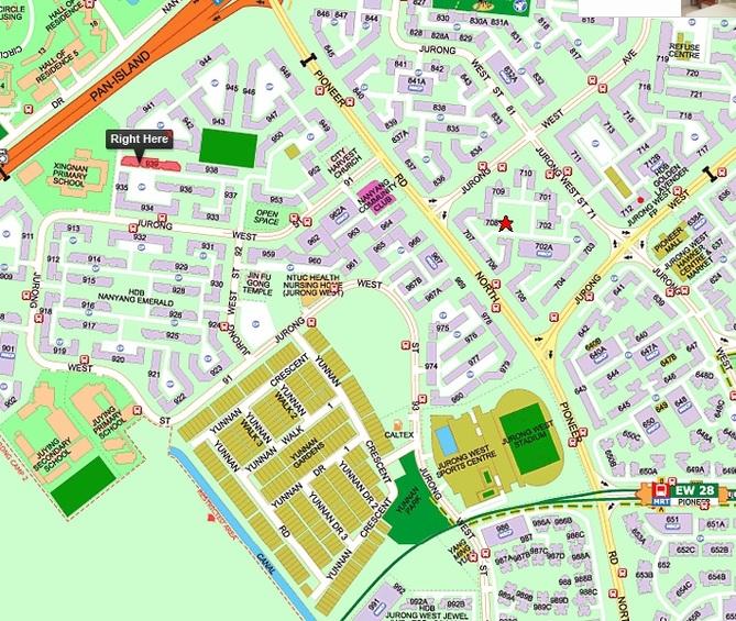 938 Jurong West Street 91