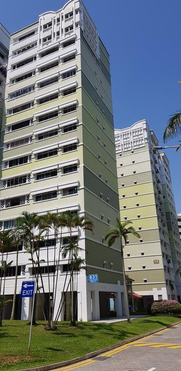 831 Jurong West Street 81