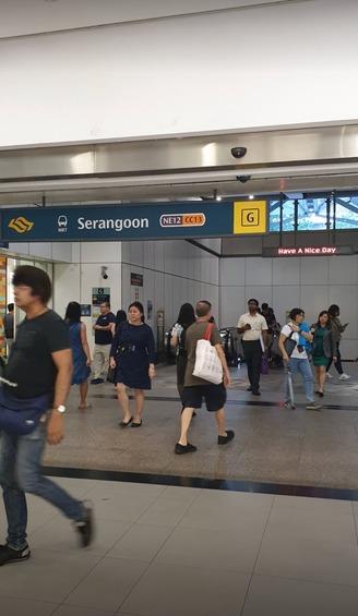 226 Serangoon Avenue 4