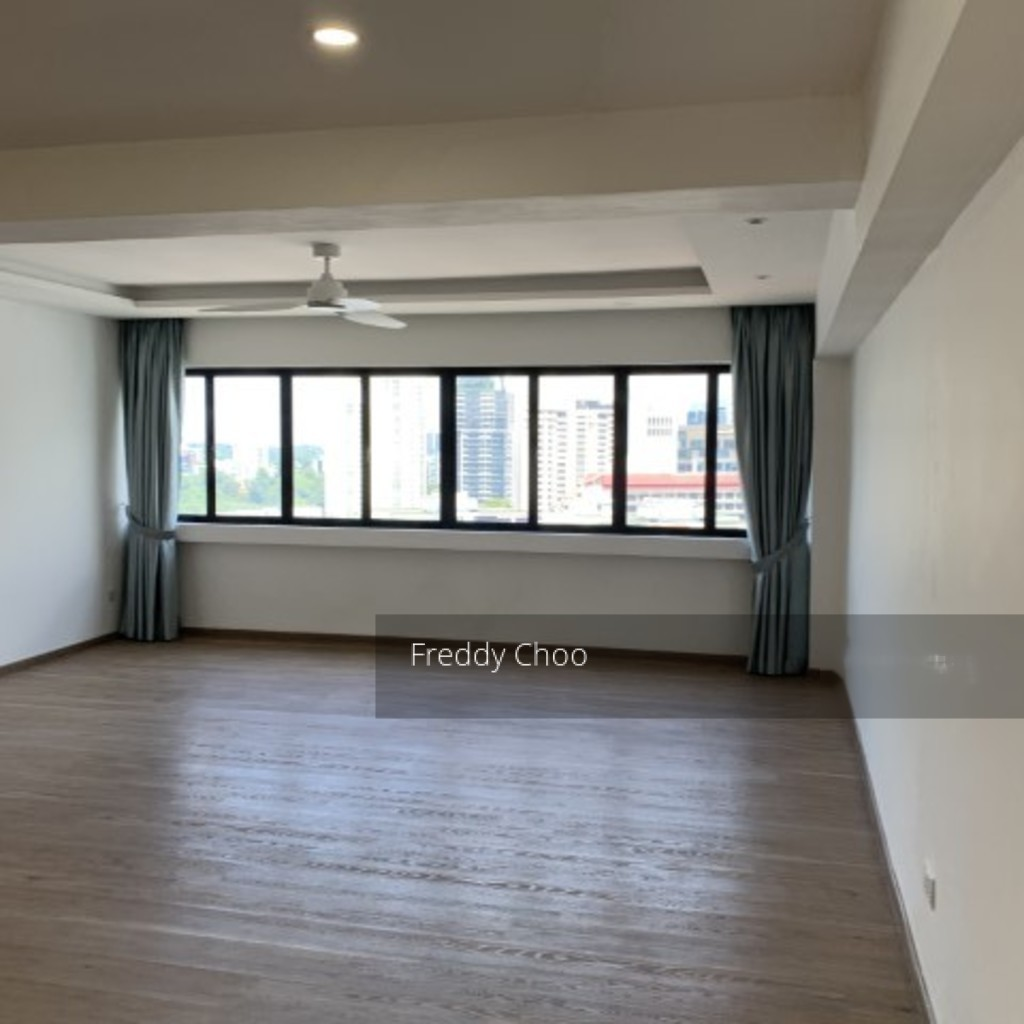 Lucky Plaza (D9), Apartment #225426041