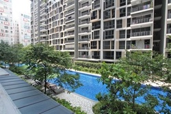 The Rainforest (D23), Condominium #245824501