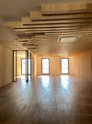 Beautiful Shophouse Office 4628sqft Serve with Elevator (D2), Office #253644041
