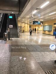 Shops for Rent at MRT stations  (D12), Retail #269238001