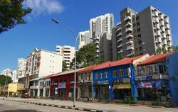Balestier Shophouse For Sale (D12), Shop House #265602481