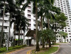 Blk 13 Cantonment Close (Bukit Merah), HDB 4 Rooms #285937291
