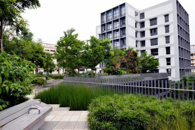 Landscape replacement policy for buildings to include vertical greens