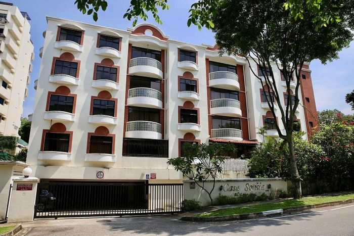 Casa Sophia and Haig Road Flats up for collective sale