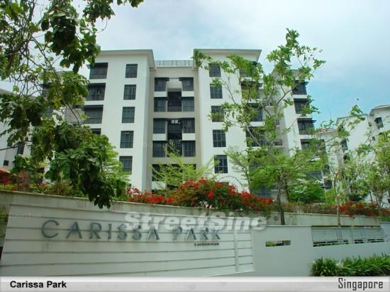 Carissa Park Condominium project photo
