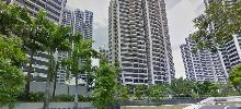 D'Leedon photo thumbnail #7