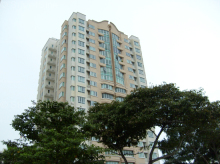 Dunman Place (D15), Apartment #1119052