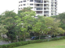 Thomson View Condominium photo thumbnail #11