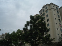 Hillview Green (D21), Condominium #983872