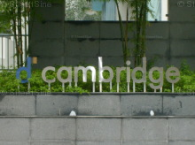 D'Cambridge photo thumbnail #15