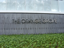 The Orange Grove photo thumbnail #11