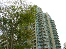 The Serenade @ Holland (D10), Condominium #1067932