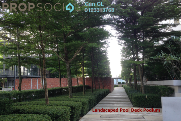 06 landscaped pool deck podium kp3x7xqcd98zyh9hy25  small