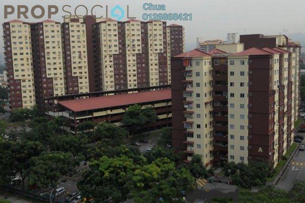 Cemara apartment small