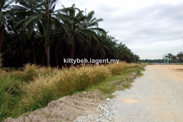 For Sale Land at Taman Seri Tambun, Bukit Tambun Leasehold Unfurnished 0R/0B 7.5m