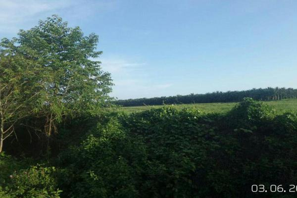 For Sale Land at Bandar Perdana, Sungai Petani  Unfurnished 0R/0B 54.7m