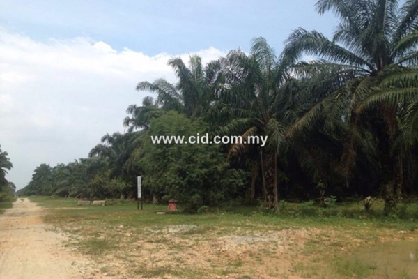 For Sale Land at Taman Dengkil Jaya, Dengkil Freehold Unfurnished 0R/0B 17.5m