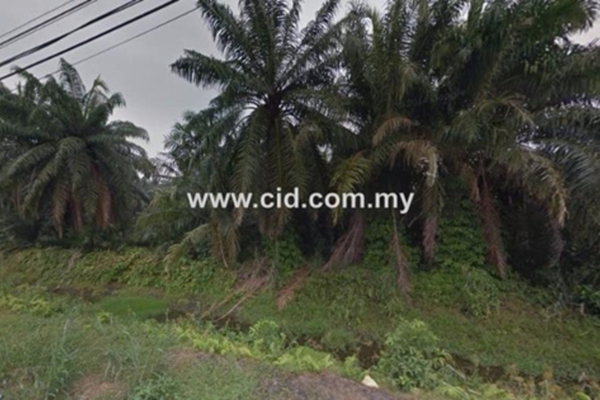 For Sale Land at Kampung Batu 9 Kebun Baru, Telok Panglima Garang  Unfurnished 0R/0B 2m