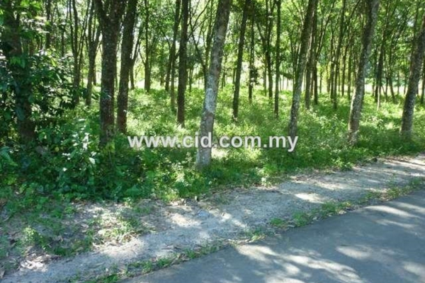 For Sale Land at Pajam, Negeri Sembilan Freehold Unfurnished 0R/0B 1.25m