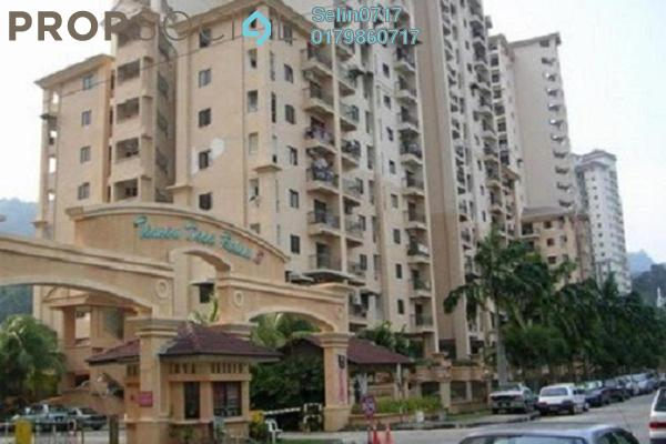 For Sale Apartment at Taman Desa Relau 2, Relau Freehold Fully Furnished 3R/2B 285k