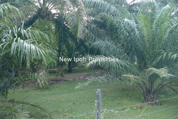 For Sale Land at Taman Gopeng, Gopeng Leasehold Unfurnished 0R/0B 469k