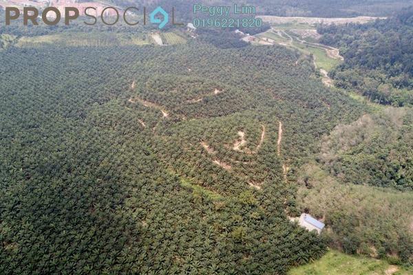For Sale Land at Karak Park Home, Pahang Freehold Unfurnished 0R/0B 67.5m