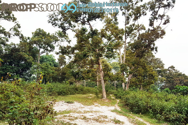 For Sale Land at Bentong Town, Bentong Freehold Unfurnished 0R/0B 1.5m