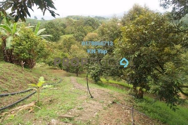 For Sale Land at Kampung Sungai Klau, Raub Leasehold Unfurnished 0R/0B 8m