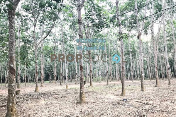 For Sale Land at Kampung Tebing Tinggi, Segamat Freehold Unfurnished 0R/0B 290k