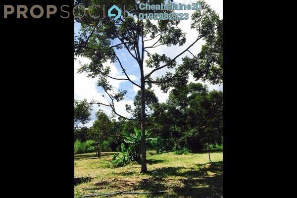 For Sale Land at Kampung Sungai Klau, Raub Freehold Semi Furnished 0R/1B 4.87m