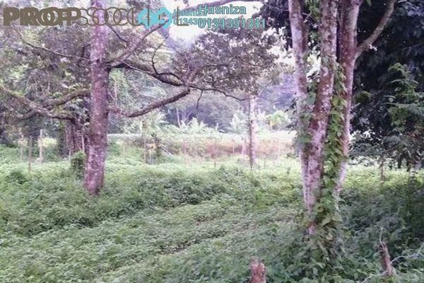 For Sale Land at Janda Baik, Pahang Freehold Unfurnished 0R/0B 2.05m