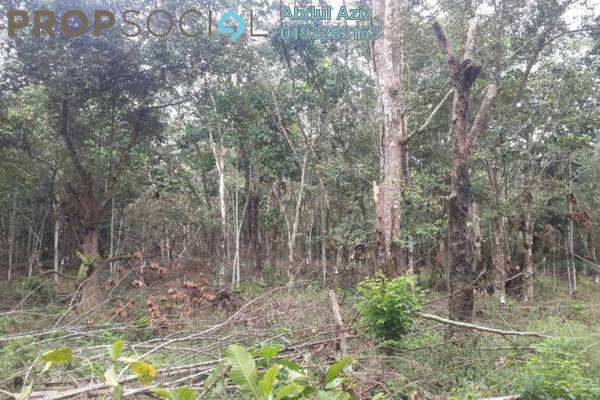 For Sale Land at Gemilang Avenue, Tanjung Malim Freehold Unfurnished 0R/0B 4.36m