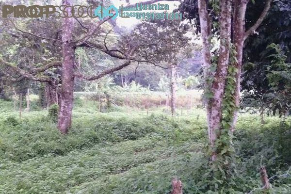 For Sale Land at Janda Baik, Pahang Freehold Unfurnished 0R/0B 2.05m