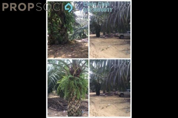 For Sale Land at Taman Banting Mewah, Banting Freehold Unfurnished 0R/0B 4.8m