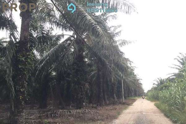 For Sale Land at Kampung Sungai Sembilang, Jeram Freehold Unfurnished 0R/0B 3m