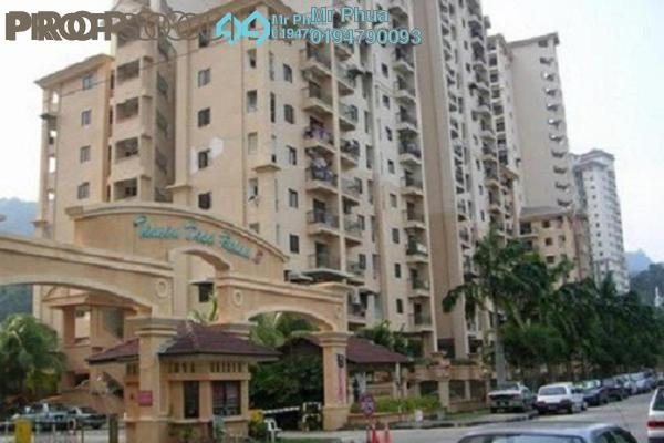 For Sale Apartment at Taman Desa Relau 2, Relau Freehold Semi Furnished 3R/2B 270k