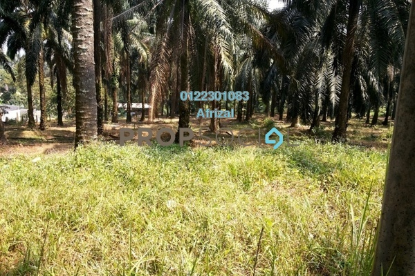 For Sale Land at Kuang, Selangor Freehold Unfurnished 0R/0B 1.28m
