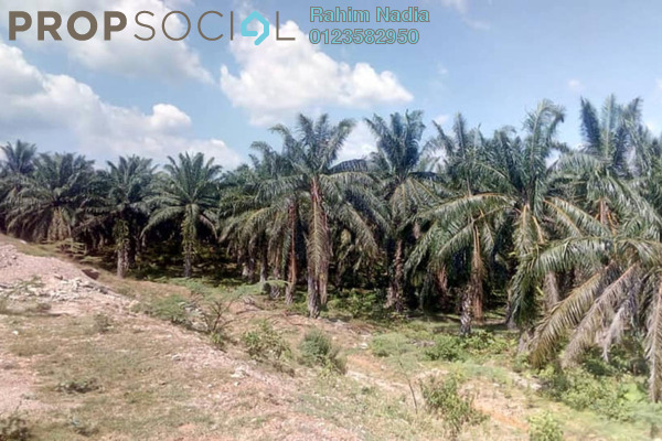For Sale Land at Amanjaya, Sungai Petani Freehold Unfurnished 0R/0B 32m